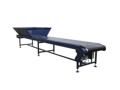 Mild Steel Painted Conveyors